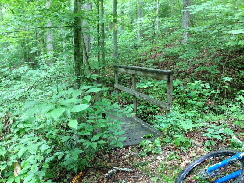 Old footbridge on Piney Grove Trail