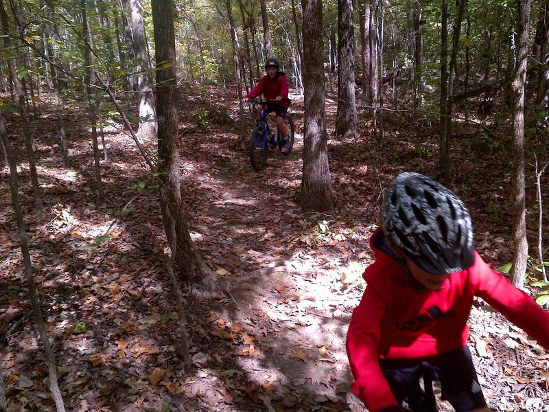 Switchback section