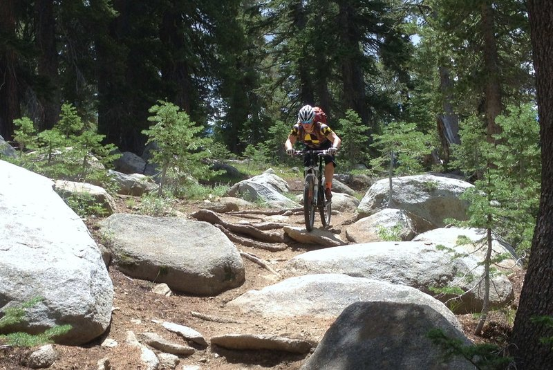 Descending Tahoe Rim Trail towards Toads.  Mix of rowdy and flowy!