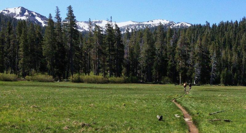 Passing through Big Meadow