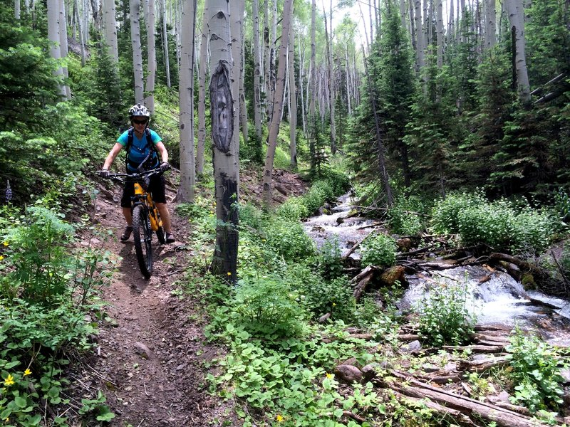 Much of the singletrack runs parallel to a great stream