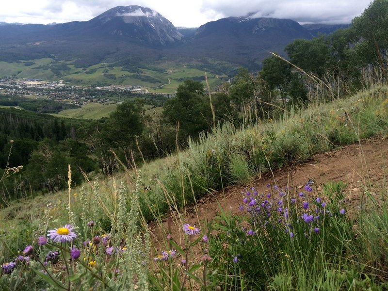The first of many views of Buffalo Peak and Silverthorne far below.
