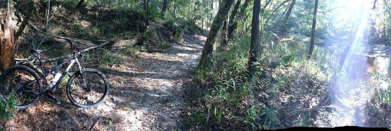 Peach Creek Trail along creek.