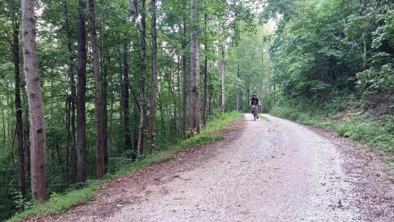 Gravel grinding along Big Limestone