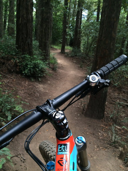 My 'home trails' are short but sweet!
