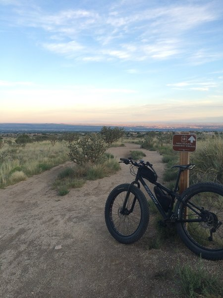Looking back over Albuquerque.