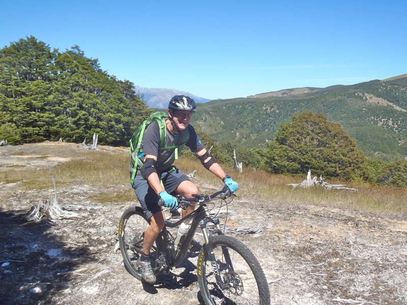 Riding through the clearings on Maitland Ridge Track