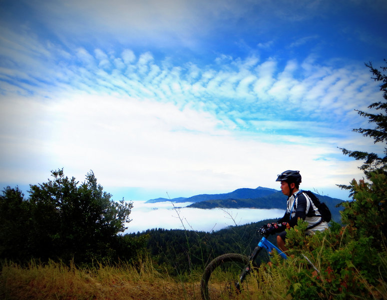 If you're seeking a way to add some work and variety to the Paradise Royale loop, Pacific Rim trail will provide both, and in a hurry.