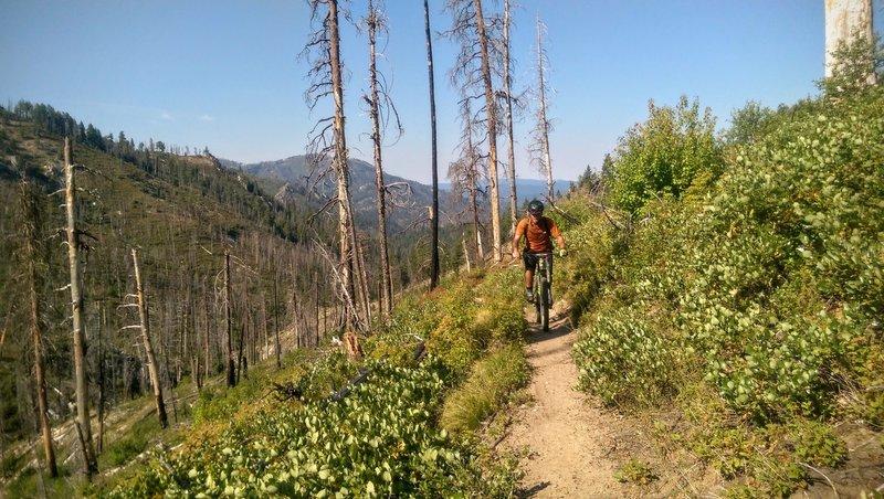 Climbing up Peace Creek