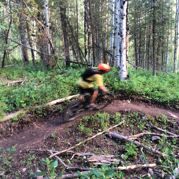 Cruising through one of the gully berms on the new Lollipop Trail extension.