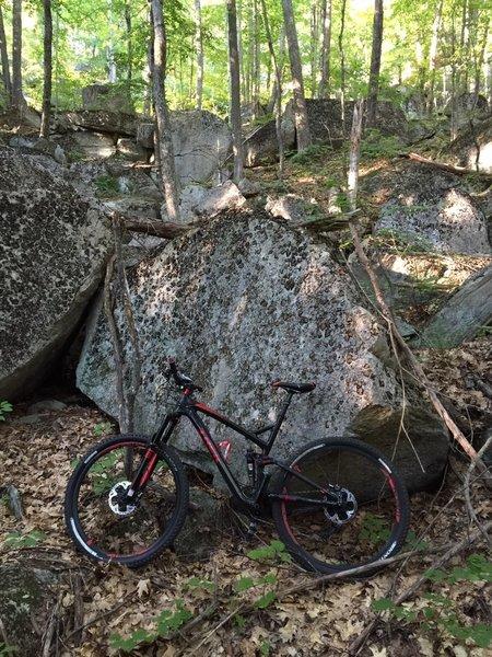Cool boulder field off the side of Hedgehog Ledge. Feels Jurassic.