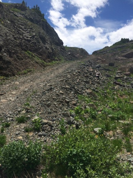 The false pass, into the alpine zone!