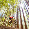 Take a detour on the Tolkan Bike Park jumps near the campground along the Paradise Royale trail.