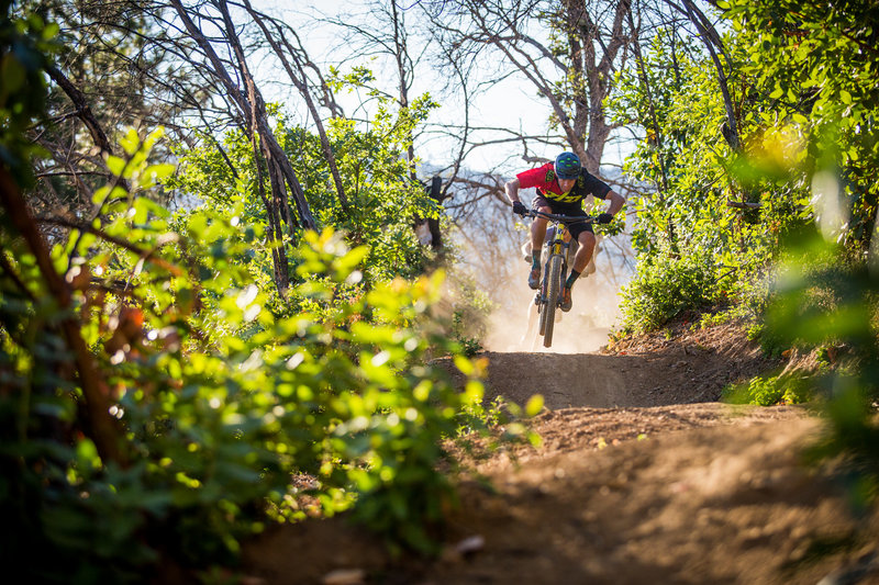 Pay Dirt trail is all fun and flow; a super playful trail overall.