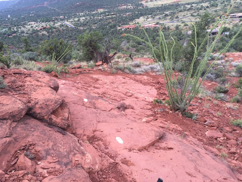 Tough steep slick rock descent on the back side of Cathedral rock.