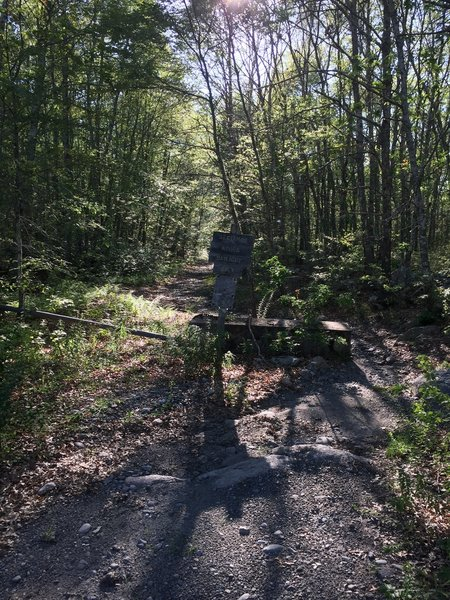 Entrance to the East (King Road) side of Lafayette Road (Weetomoo Woods).