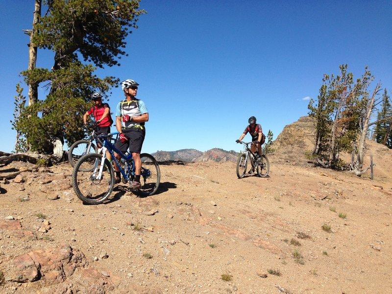 On the ridge below Custer Lookout.