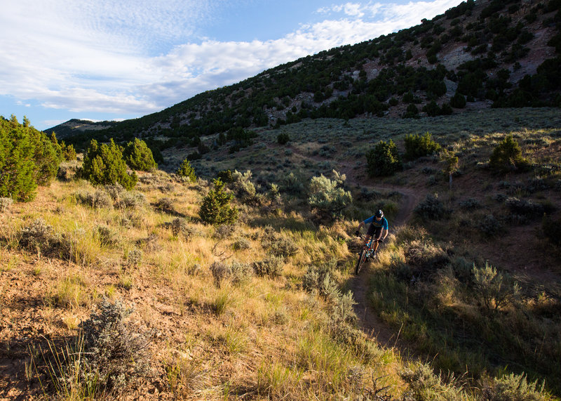 The bottom end of Johnny Draw trail near the main trailhead and parking area.