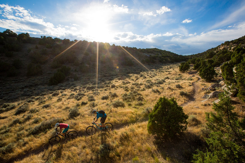 Golden light on the Johnny Draw trail.
