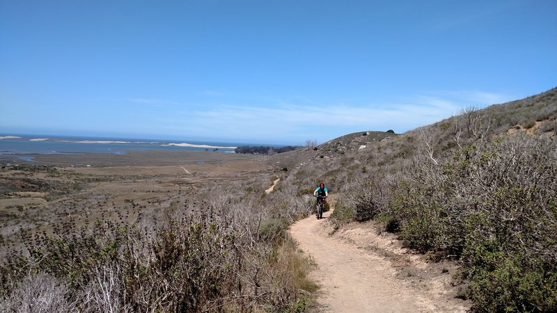 Top of the climb, nice view of Morro Bay and the Sandpit.