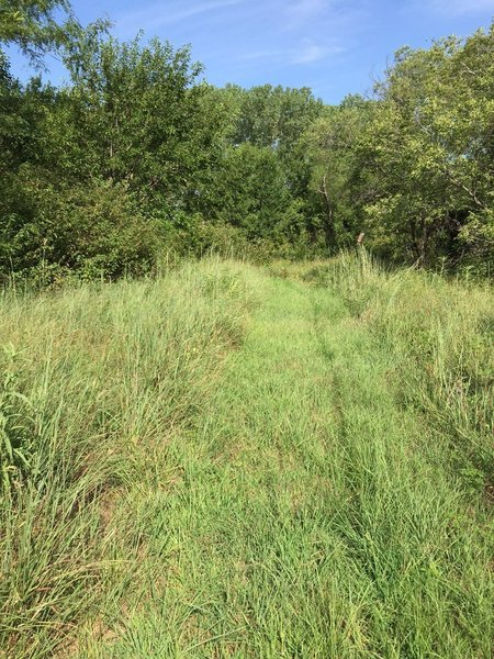 The trail is a mowed path, no tread.  A heck of a workout, I promise!