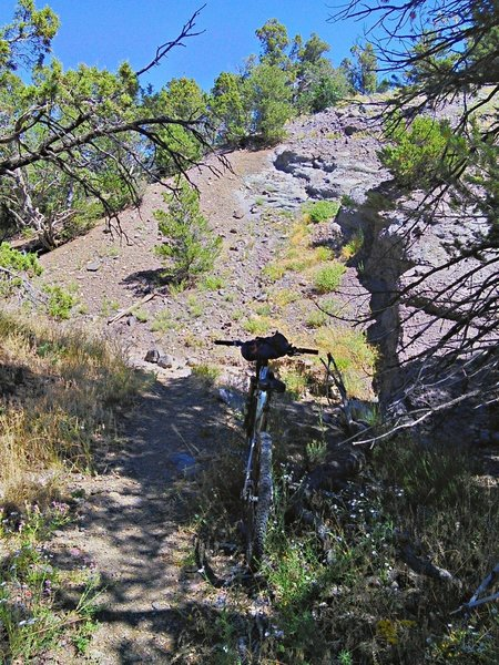 South end of the Horse Gulch Trail