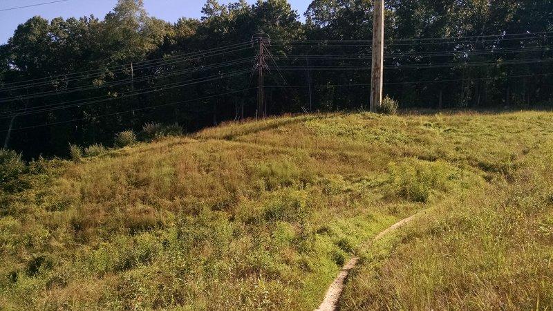 Seneca Ridge Trail powerline cut