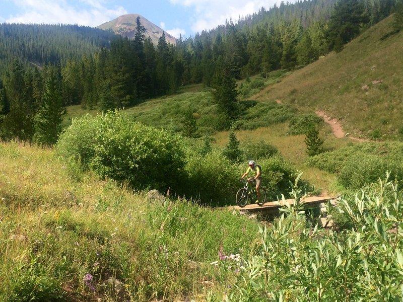 Beautiful start up Guller Creek