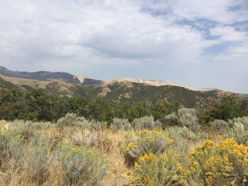 Saddle View