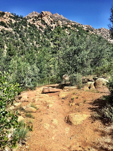 Rocky ridge above Trail #345