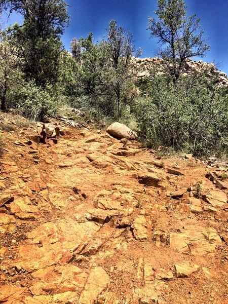 Embedded slab along Trail #345