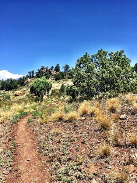 Rocky bluff ahead on Trail #345
