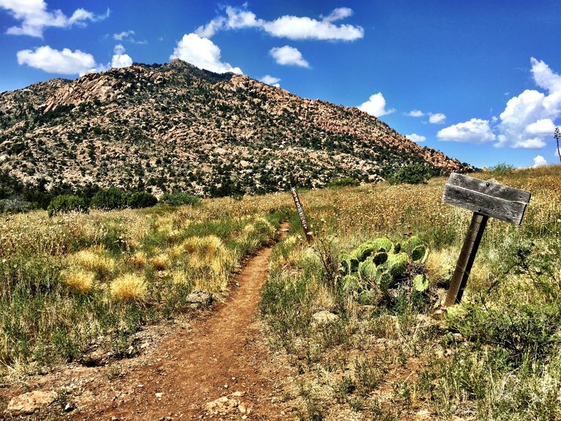 Trail #345 and #347 with Granite Mtn in the background