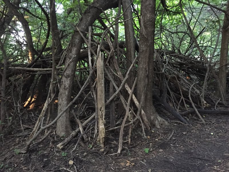 Looks like kids have built a fort along the trail