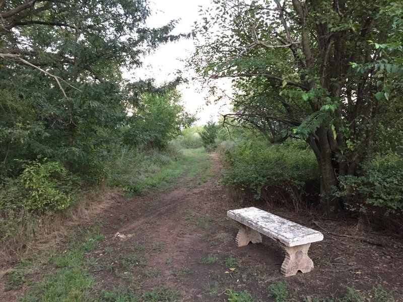 Another bench for the hikers...or worn out bikers...you pick!