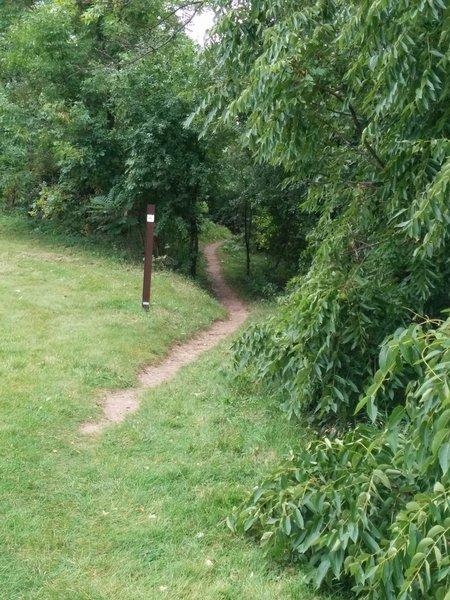 Overlook trail terminus
