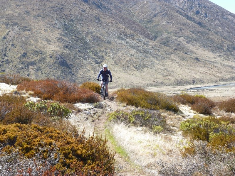 Starting the climb to Fowler Pass from the Pass Stream Hut in the Clarence Valley, 3km north of Hanmer Springs.