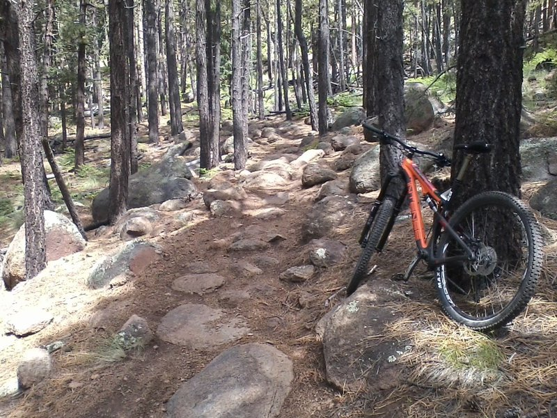 One of many rock gardens on the secret trail.