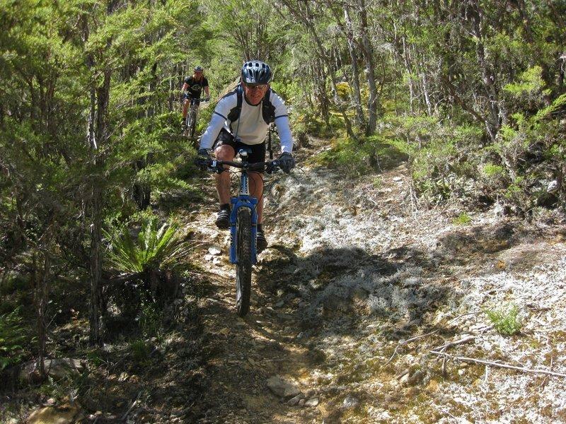 Riders enjoy the manuka lined descent to Waingaro Forks