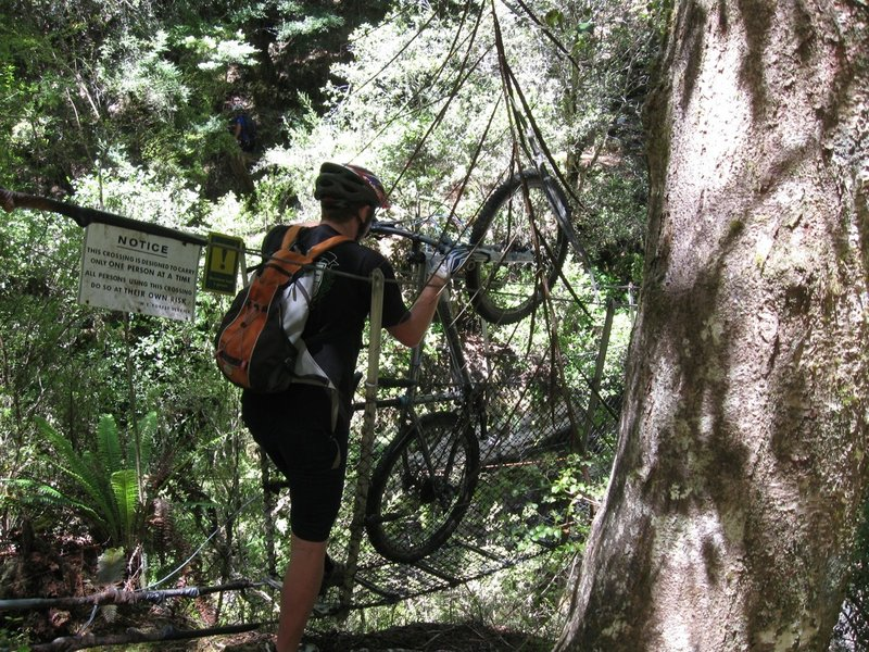 A swingbridge 200 metres before Waingaro Forks Hut is an obstacle for bikes. It is better to leave bikes before the bridge.