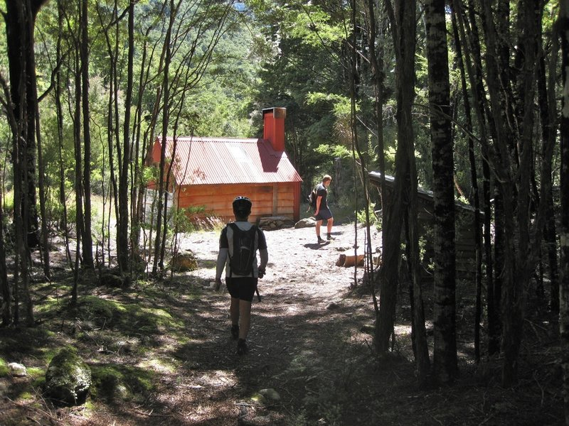 Waingaro Forks hut appears, nestled in a clearing in the fork of the Waingaro River