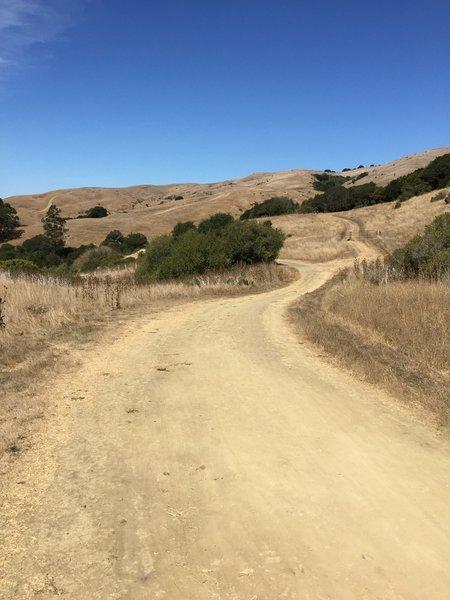 Open Roads on the Wildcat Creek Trail