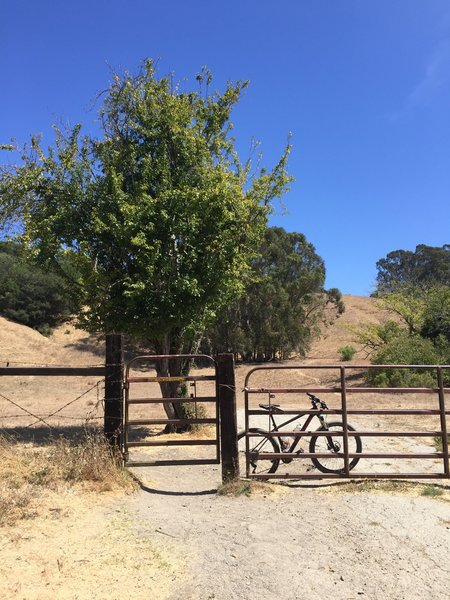 Cross through the cattle guard on the Belgium Trail