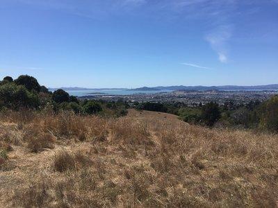 Mountain Bike Trails Near Wildcat Canyon Regional Park