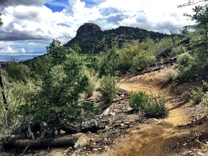 Trail #326