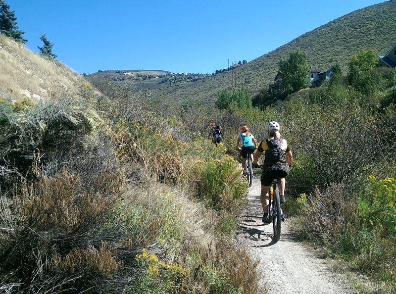 Heading up the June Creek Trail