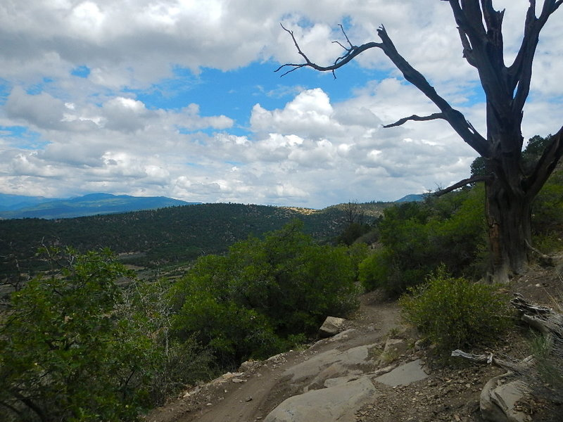 Vista from the Telegraph Trail