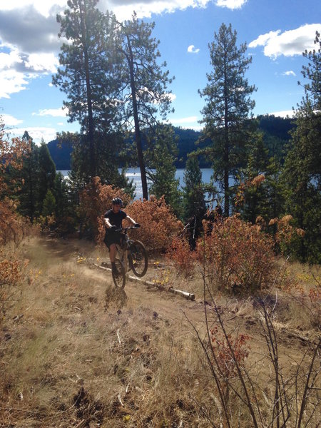 Making it look easy on the Tesemini Trail