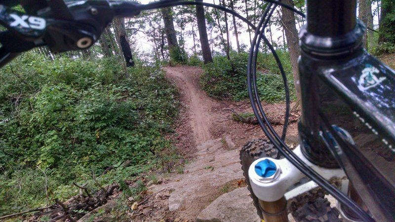 Hard packed rock descent into a fast singletrack on the Red Loop
