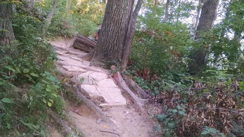 Nice climb on the Green Loop